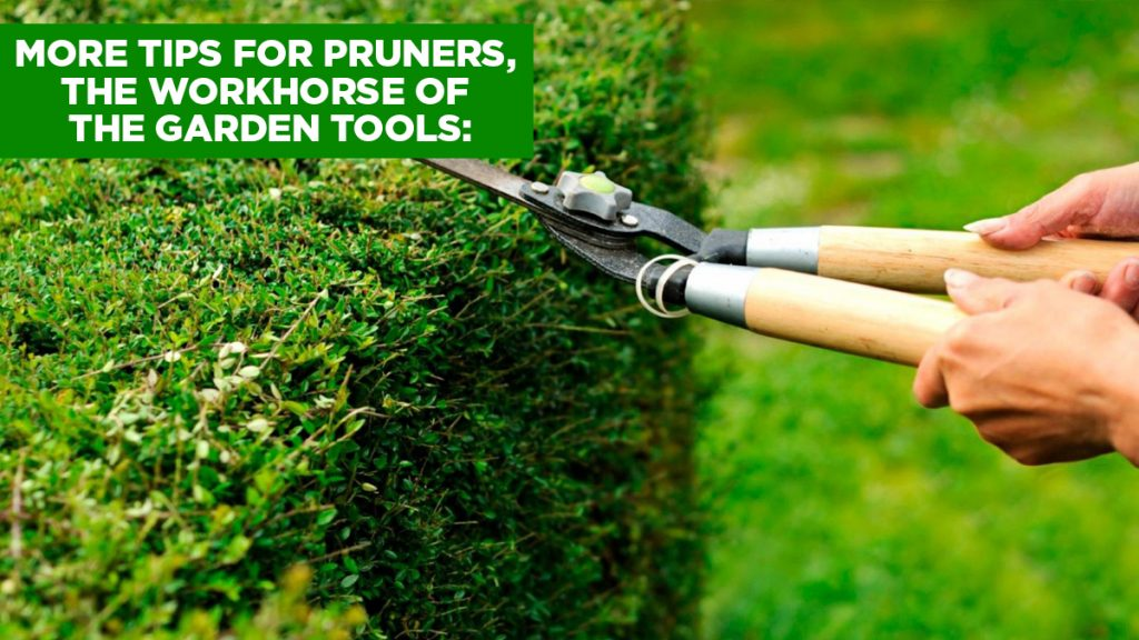 tips for garden tools